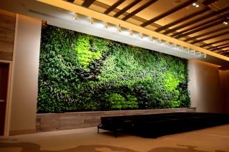 3fd_living_wall_inspiration3